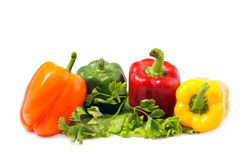 Multicolored paprika. On white background Stock Images