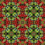 Multicolored pattern of the leaves. Collection - tree foliage. Y. Ou can use it for invitations, notebook covers, phone cases, postcards, cards and so on Royalty Free Stock Photo