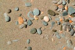 Multicolored pebble on wet sand. Sea beach, coast royalty free stock photos