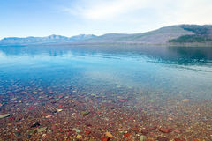 Multicolored Pebbles Lake McDonald. Glacier National Park, Monta Stock Image