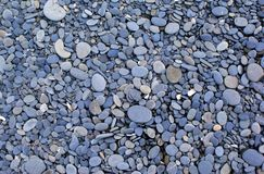 Multicolored pebbles and stones. Aerial view of multicolored and various sized rounded rocks and stones Stock Image