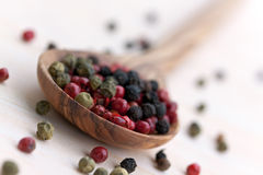Multicolored Peppercorns In The White Olive-wooden Royalty Free Stock Image
