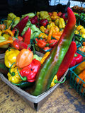 Multicolored peppers at farmers Market Royalty Free Stock Image