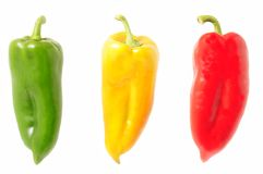 Multicolored peppers isolated on white Royalty Free Stock Image