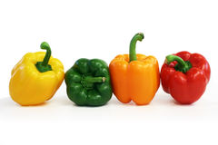 Multicolored Peppers Lined Up. Multicolored peppers are displayed Stock Images