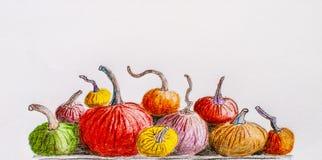 Multicolored Pompoenen Geschilderd potlood De hand trekt Royalty-vrije Stock Afbeeldingen