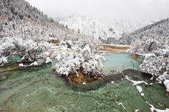Multicolored ponds in huanglong Stock Photography