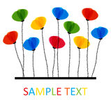 Multicolored Poppy Flowers. Design For Greeting Ca Royalty Free Stock Photo