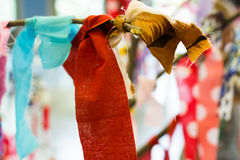 Multicolored Prayer Rags on a Tree Royalty Free Stock Photo