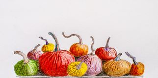 Multicolored pumpkins. Painted pencil. hand draw Royalty Free Stock Images