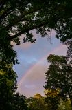 A multicolored rainbow after the rain among the crowns of trees at dusk stock photography