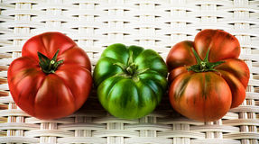 Multicolored Raw Tomatoes Stock Photography