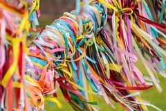 Multicolored ribbons tied up on the tree of desires. Stock Photo