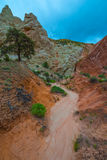 Multicolored rock formations near the Cottonwood Canyon Road Uta Stock Photography