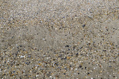 Multicolored rocks and shells on the sand. Royalty Free Stock Photography