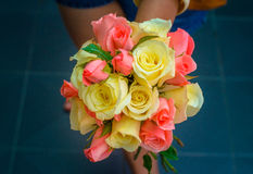 Multicolored roses in hand Stock Image