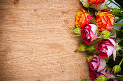Multicolored roses on a wooden board Stock Image