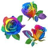 Multicolored rozen op witte achtergrond Positieve de Lenteillustratie met Bloemen Royalty-vrije Stock Foto