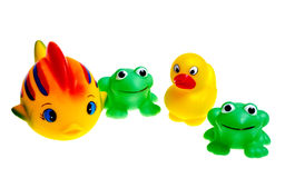 Multicolored rubber toys (frogs, ducks, fish). Are isolated on a white background Stock Photography