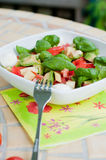 Multicolored salad Stock Photography