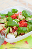 Multicolored salad Royalty Free Stock Images