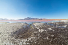 Multicolored Salt Lake with volcano on the Bolivian Andes Royalty Free Stock Photo