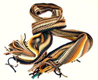 Multicolored scarf Stock Images