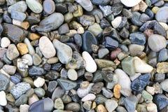 Multicolored sea pebbles background Stock Photography