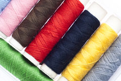 Multicolored Sewing Threads Stock Images