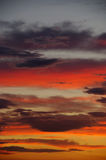 Multicolored sky. Clouds in the multicolored sky Royalty Free Stock Image