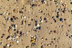 Multicolored small stones lying on sand shore flat lay stock image