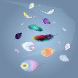 Multicolored soaring feathers background stock illustration