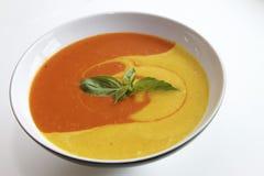 Multicolored soep met verse kruiden Stock Afbeelding