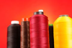 Multicolored Spools of Thread Stock Image