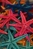 Multicolored starfish souvenirs Stock Images
