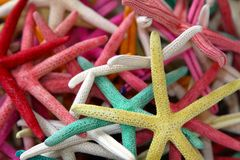 Multicolored starfish souvenirs Royalty Free Stock Image