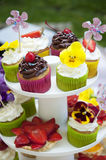 Multicolored summer cupcakes Royalty Free Stock Images