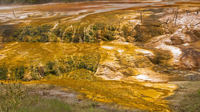 Multicolored terraces are one of the attractions o Stock Images