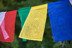 Tibetan flags closeup. Multicolored tibetan flags in the park closeup Royalty Free Stock Images