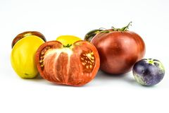 Multicolored tomatoes closeup. Royalty Free Stock Photo