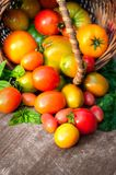 Multicolored tomatoes on wooden background Royalty Free Stock Photos