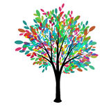 Multicolored tree. Decorative tree with multicolored foliage Royalty Free Stock Photography