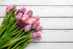 Multicolored tulips background Royalty Free Stock Photo
