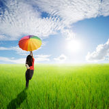 Multicolored umbrella woman jumping in green rice field and sun sky Stock Photo