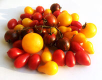 Multicolored various tomatoes included yellows and reds ready fo Stock Photo