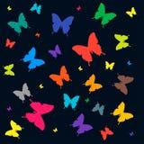 Multicolored vlinders Royalty-vrije Stock Afbeeldingen