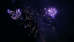 Multicolored vurige flitsen van feestelijk vuurwerk in de nachthemel stock videobeelden