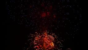Multicolored Vuurwerk die bij Vakantie Nacht fonkelen stock footage