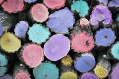 Multicolored woodstack background Stock Photos