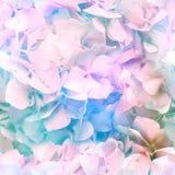 Multicolour över hela blomningtryck royaltyfri illustrationer